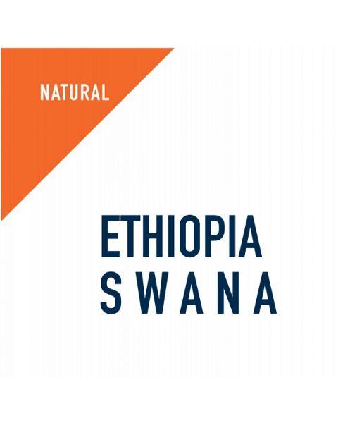 القهوة المختصة اثيوبيا سوانا , مجففة 1 كجم (SCR016)