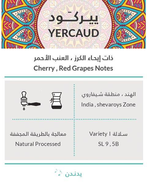 كِفة ييركود حبوب القهوة 250 جرام (KIFFA-YERCAUD)