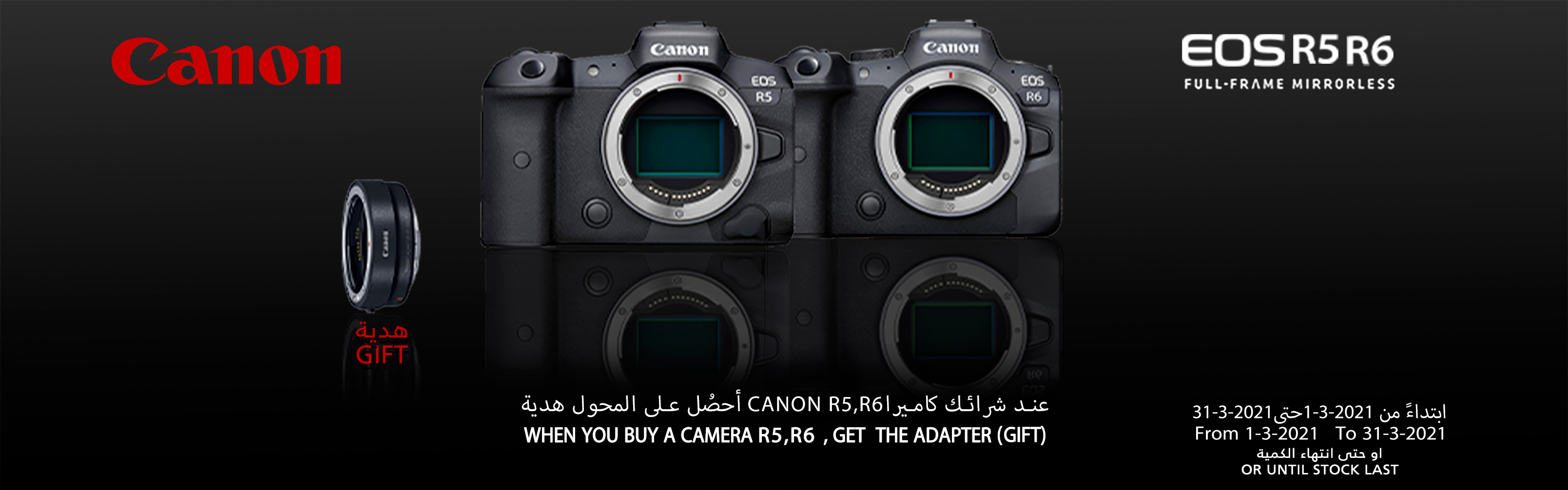 canon r5 and canon r6 offer